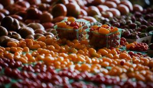 RedTomatoes